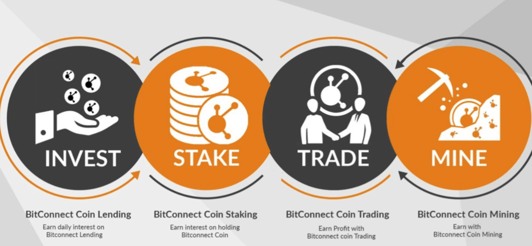 davorcoin similar to BitConnect