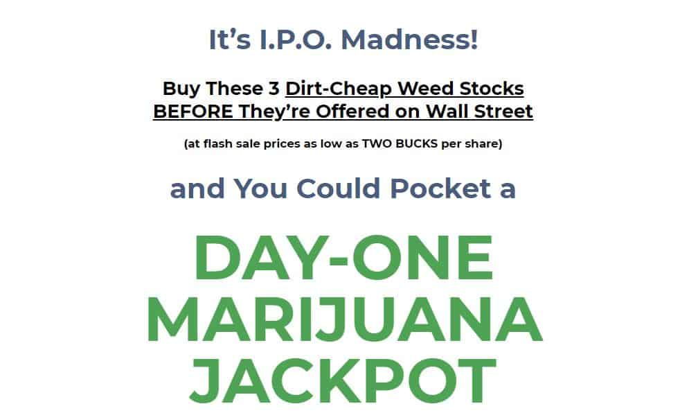 Day One Marijuana Jackpot by Ray Blanco