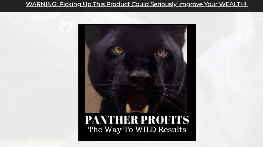 panther profits